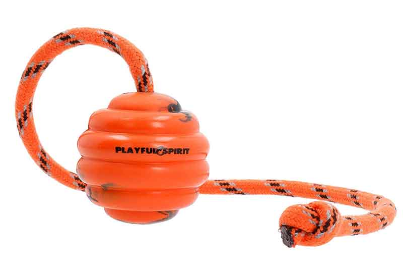 PlayfulSpirit Rubber Ball on a Rope