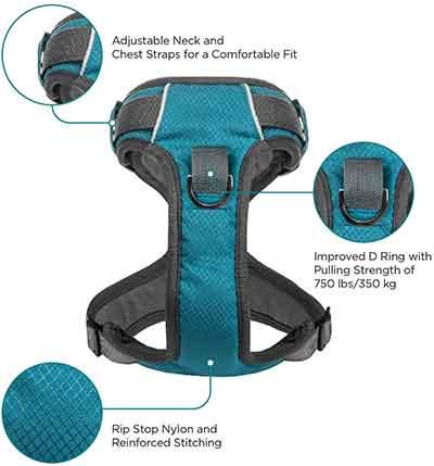 embark adventure harness